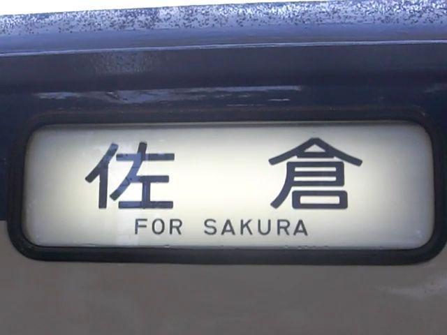 https://www.chibatrain.xyz/houkoumaku/picture/113/sakura.jpg